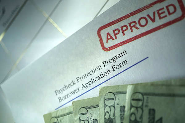 Paycheck Protection Program - Borrower Application Form