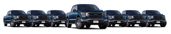 Row of seven blue Ford F150 trucks.